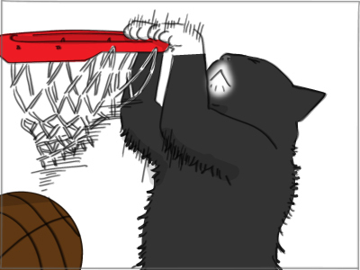 basketball_cat_2.jpg